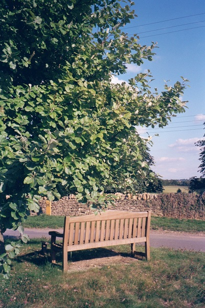 Dean in Oxfordshire: Queen's Jubilee bench and tree